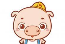 1971年生肖猪的感情剖析