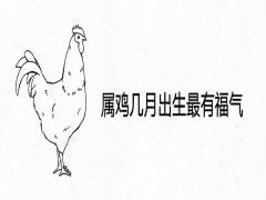 属鸡几月出生最有福气