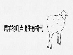 属羊的几点出生有福气