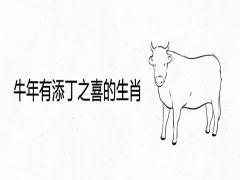 牛年有添丁之喜的生肖