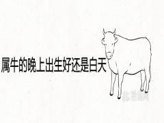 属牛的晚上出生好还是白天好最佳出生时辰是几点