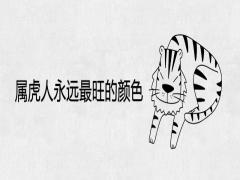 属虎人永远最旺的颜色