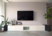 电视柜摆什么植物旺财?