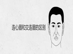 连心眉和交连眉的区别男人有这种眉形好不好