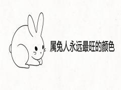 属兔人永远最旺的颜色
