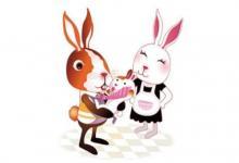 属兔的本命佛是什么?