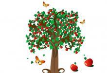 院子种植什么树木旺财?