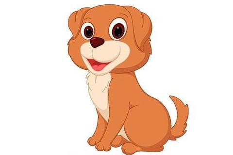 生肖狗的幸运楼层是哪些?