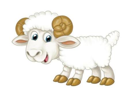 1979年生肖羊男性和什么生肖最配?