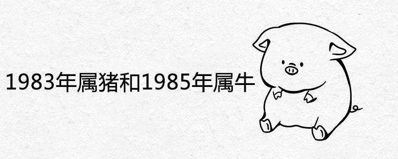 1983年属猪和1985年属牛