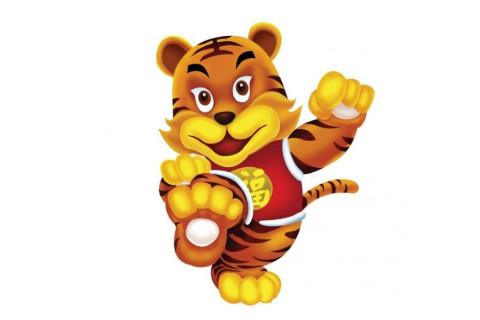 生肖老虎的今年几岁?