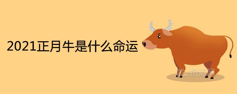 2021正月牛是什么命运是上等命吗