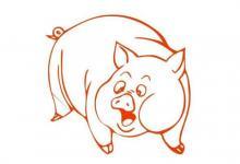 生肖属猪的哪个月份最好?