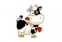 属牛的和什么属相不合?