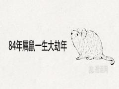 84年属鼠一生大劫年哪几年有大坎