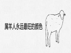 属羊人永远最旺的颜色