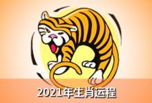 2021年属虎的运势和财运如何?