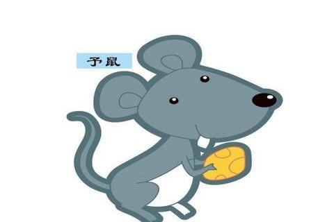 属鼠人佩戴什么东西招财?