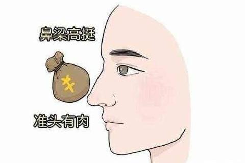大吉的鼻梁面相特征