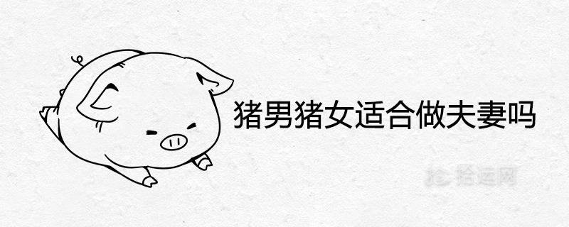 猪男猪女适合做夫妻吗