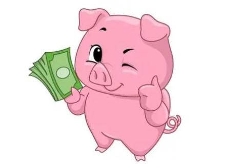 正月猪人的运势好不好?