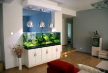 家庭鱼缸的最佳摆放位置图