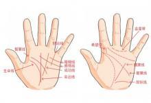 手掌上的婚姻线短有什么寓意?