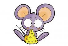 生肖鼠生于哪年?