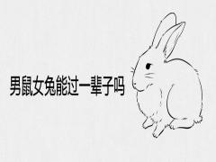 男鼠女兔能过一辈子吗