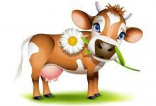 生肖牛生于哪年?