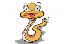 生肖蛇能配生肖狗的吗?