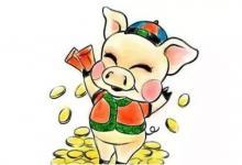 属猪的人最好的八字是几点?