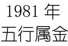 1981年11月18日五行属什么?