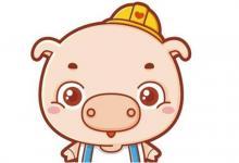 生肖猪与什么生肖配?