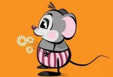 生肖鼠的人几月出生最好?