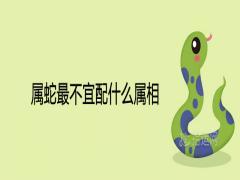 属蛇最不宜配什么属相一辈子的克星是谁