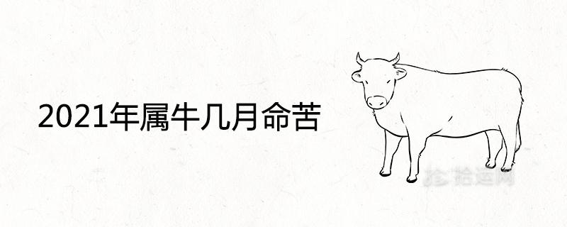 2021年属牛几月命苦