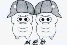 梦到生双胞胎儿子