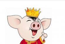 生肖猪哪个月生比较好?