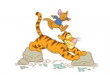 属虎和哪个生肖般配?