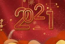 2021年是什么属性?