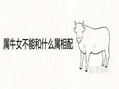 属牛女不能和什么属相配