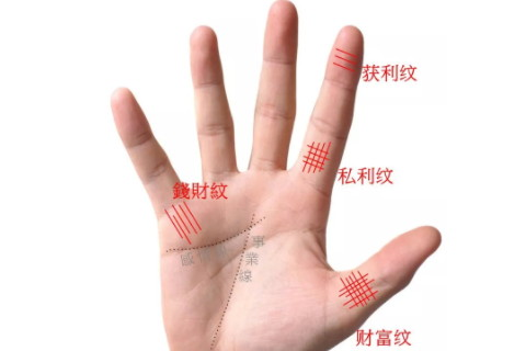 手纹繁杂代表什么 人生大起大落十分精彩