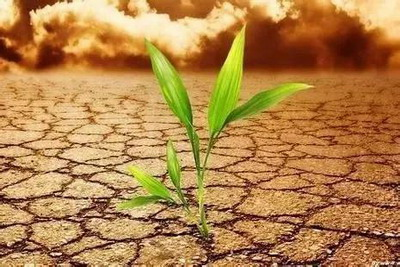 土命是哪种命?属土之人哪个方位最旺