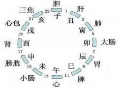 黄帝内经十二时辰养生法对照表详细,时间表
