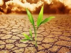 土命克水命用什么破解?为什么土命以水为财